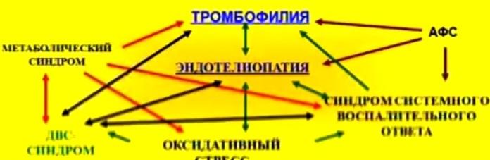 Тромбофилия: причины